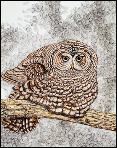 """Owl Study #1 - Colored ink on paper, 14"""" x 17"""", 2003"""